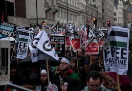 Pro Palestinian Demonstrations
